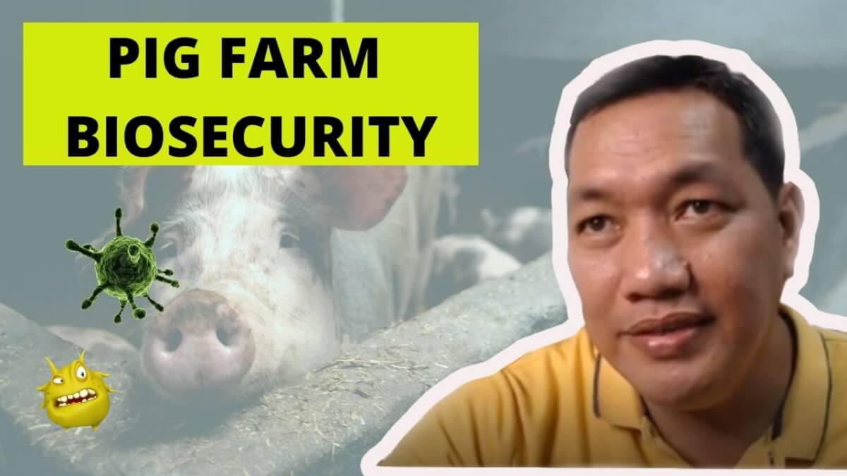 Pig Farm Biosecurity